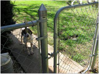 Mangled fence2