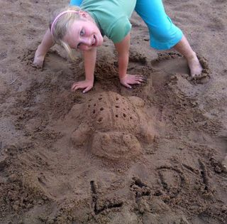 Lady bug sand art