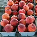Flickr credit La Grande Farmers' Market