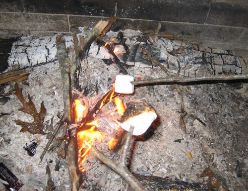 Camping s'mores cooking