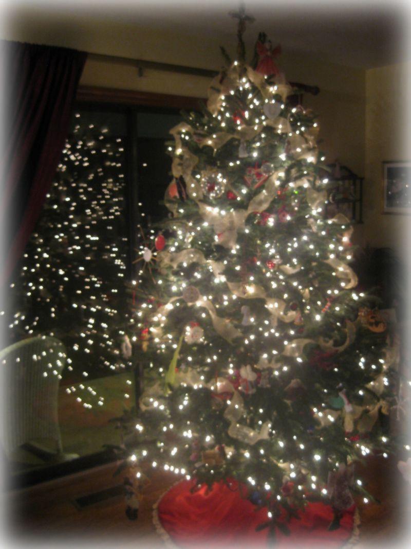Christmas tree with lights 2010