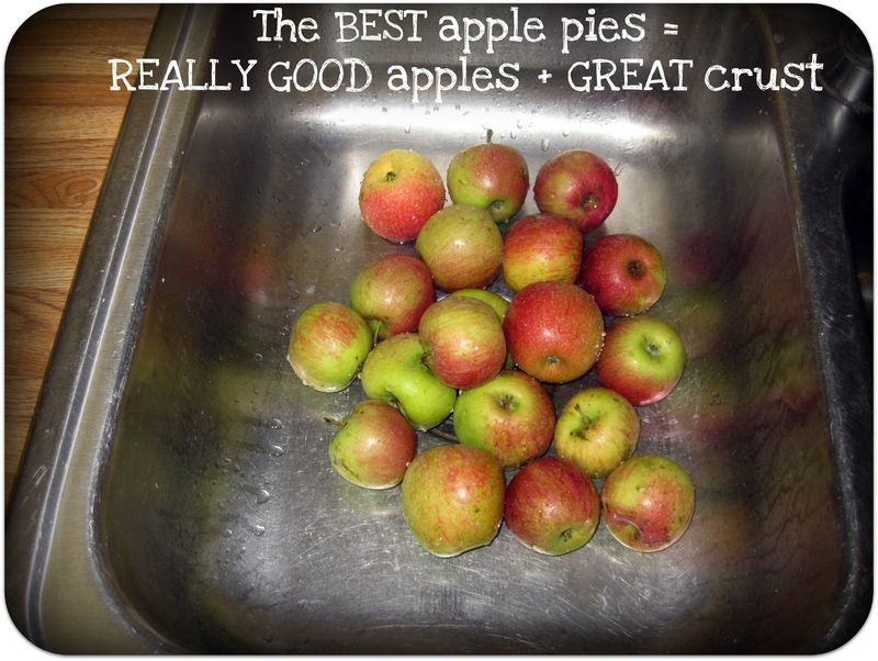 Apple pie is better with really good apples