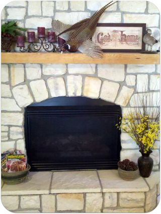 Pheasant mount over the fireplace