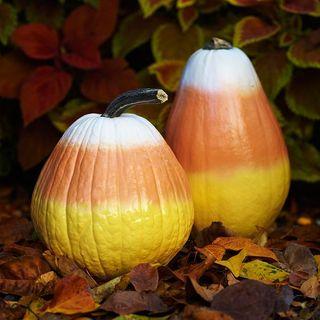 Pinterest candy corn pumpkins