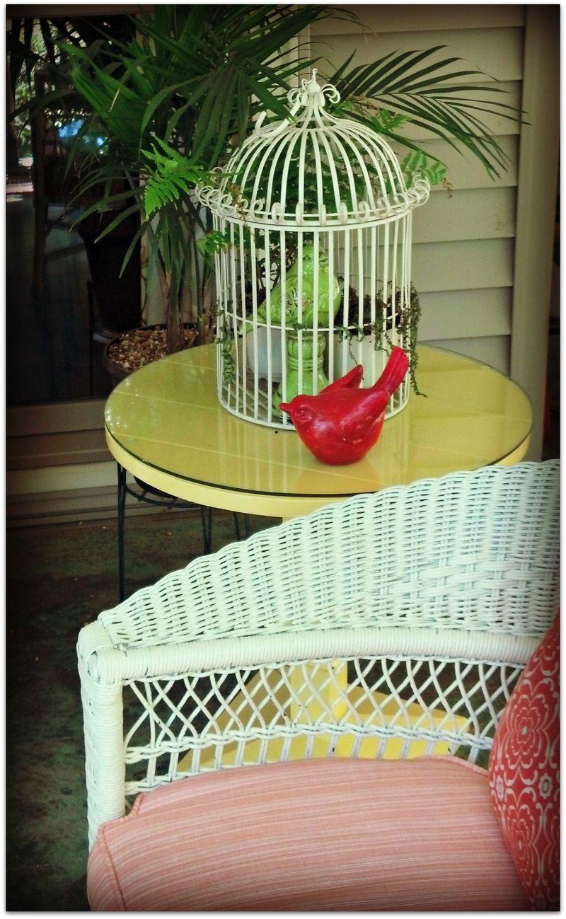 Red bird on porch