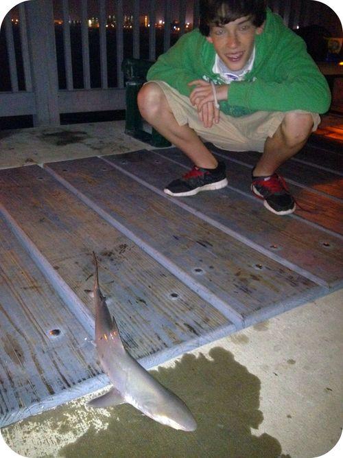 Brady caught a baby shark