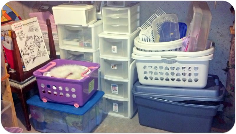 Weekend pics bin organizing heaven